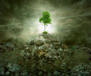 Green concept as a leaf tree on top of mountain heap of garbage with r